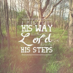Steps on the Path - Pocket Fuel Daily Devotional on Proverbs 16:9