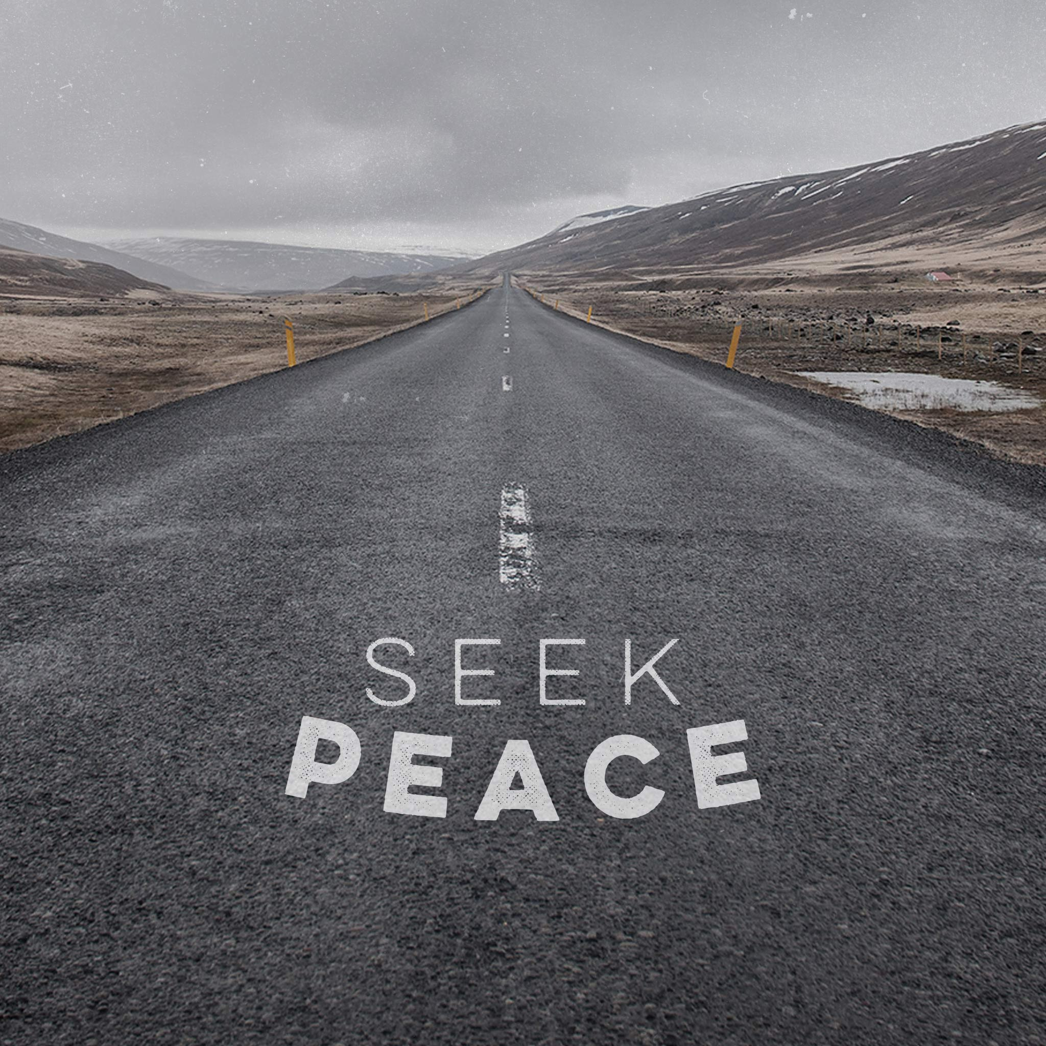 Seek Peace Quotes: | Double Quotes
