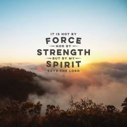 Strength and Spirit Devotional - Pocket Fuel