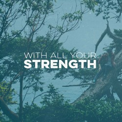 You are strong daily devotional Deut 6-5 Pocket Fuel