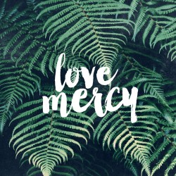 Love Mercy - Part 2 - Pocket Fuel Daily Devotional on Micah 6:8