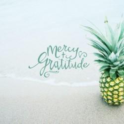Gratitude Attitude - Part 4 - Pocket Fuel Daily Devotional on Matt 18:28-30