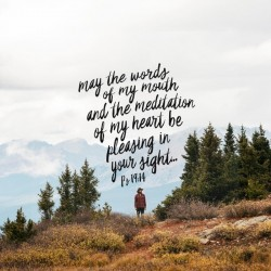 Pure and Pleasing - Pocket Fuel Daily Devotional on Psalm 19:14