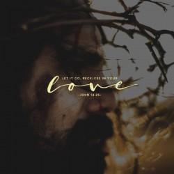 Broken Body and Spilled Blood - Part 5 - Pocket Fuel Devotion on John 12:25