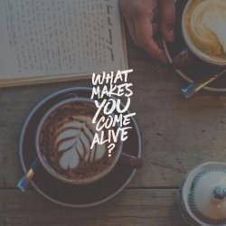 Dream Come True - Part 5 - Pocket Fuel Daily Devotional on Matt 13:44