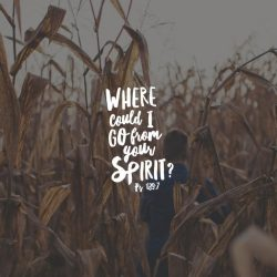 Where Could I Go From Your Spirit - Part 8 - Pocket Fuel Daily Devotional on Psalm 139:7