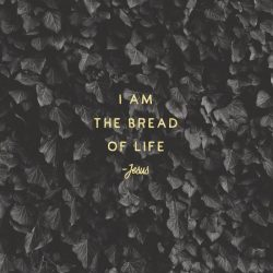 Fish and Loaves - The Meal Series - Part 4 - Pocket Fuel Daily Devotional on John 6:11