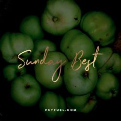 The Sunday Best - Carol Dweck and your mindset, We Welcome Refugees and more