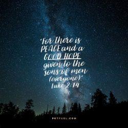 Whats Next Series – Part 1 - Pocket Fuel on Luke 2:14