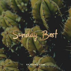 The Sunday Best - What is privilege, emotional agility, Richard Rohr and more