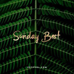 The Sunday Best - What shapes our motivations, Peter Rollins, bone broth and more