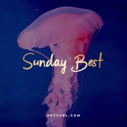 The Sunday Best - Turning the other cheek, Are You Indispensable? and more