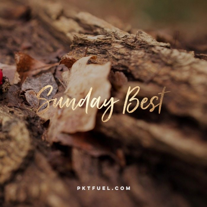 The Sunday Best – The psychology of Genesis, eating frogs and more