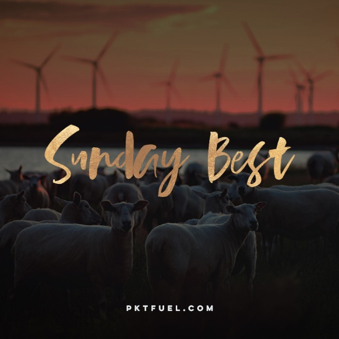 The Sunday Best - Try to love the questions, The Virgin Way and more