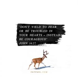 Don't Yield to Fear - Advent 2017 Serieson John 14:27