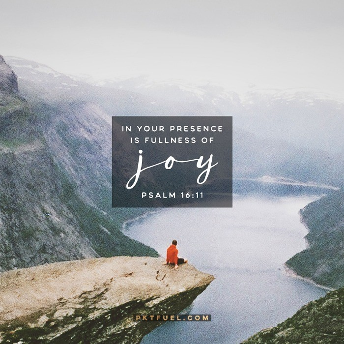 Fullness of Joy – The Sin Series – Part 6