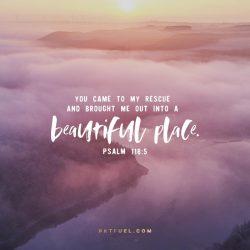 The Jaws of Distress –The Distress Serieson Job 36:16
