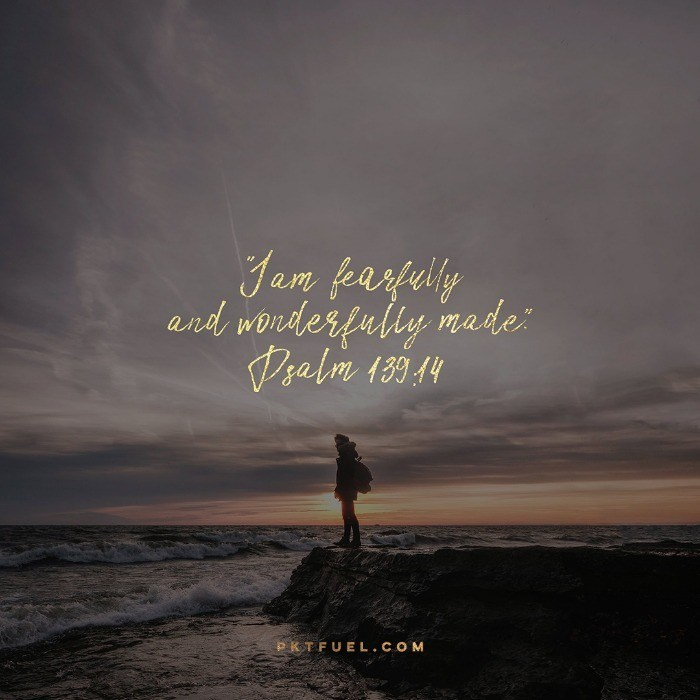 fearfully and wonderfully made pocket fuel