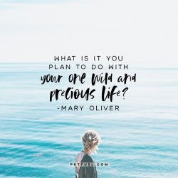 Your One Wild and Precious Life –The Time Series on Mary Oliver